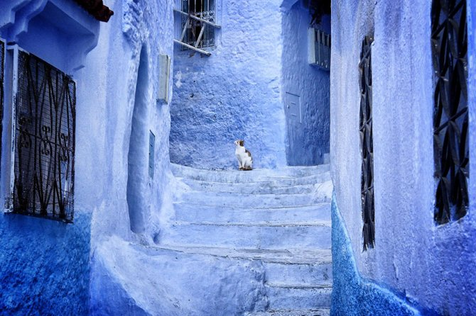 xblue-streets-of-chefchaouen-morocco-4.jpg.pagespeed.ic.LEtS3T2q7z