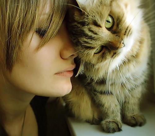gatti e donne, donna con gatto tigrato