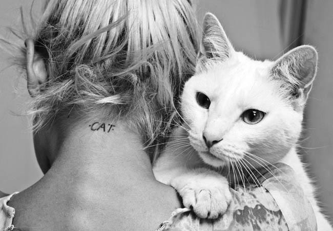 Gatti e donne,donna e gatto bianco