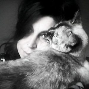 Amore speciale tra Gatti e donne