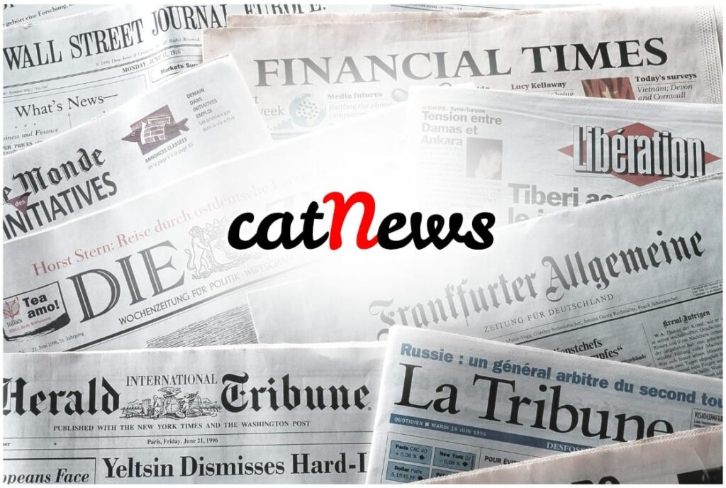 Notizie gatti, cat news