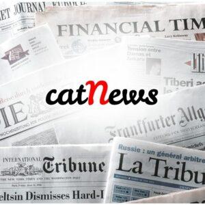 Notizie sui gatti Aprile 2021