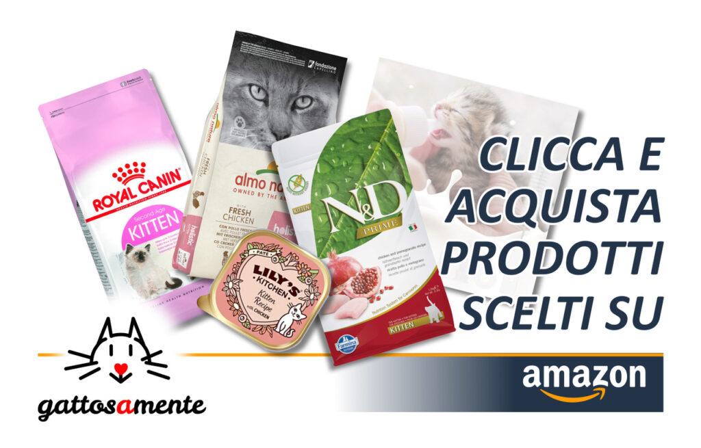 Gattosamente & Amazon