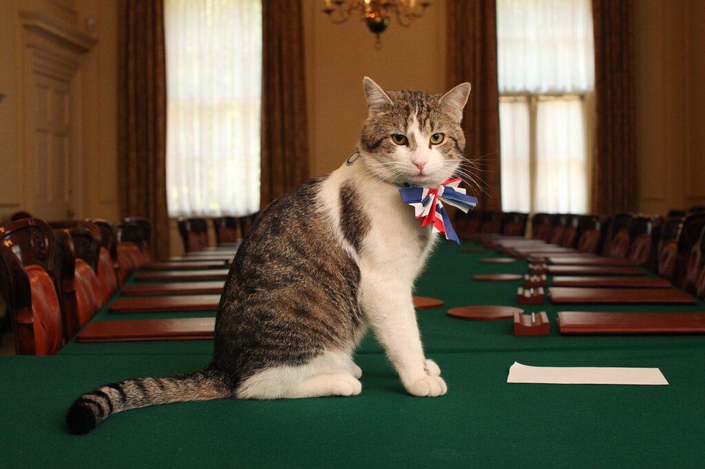 Larry il gatto di Downing Street