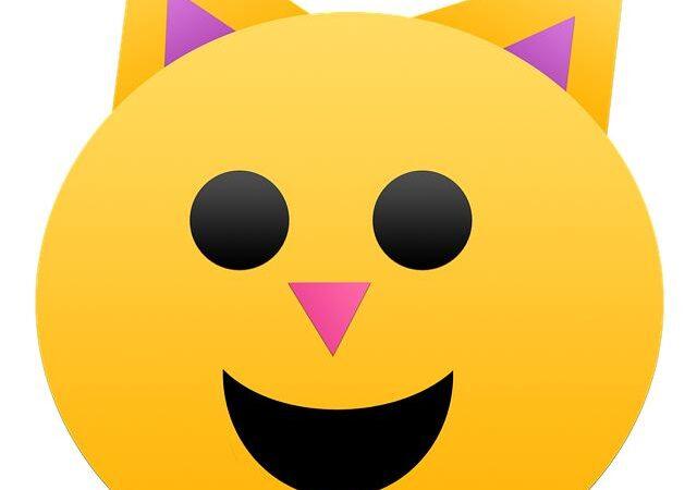 Emoticon gatto da fare con la tastiera e non solo